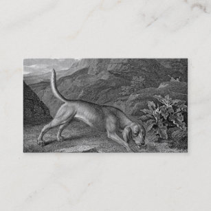 Hunting Hound Business Cards Business Card Printing Zazzle
