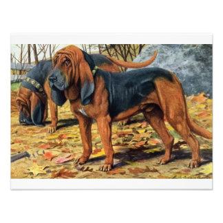 Bloodhound Invitation