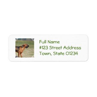Bloodhound Return Address Label