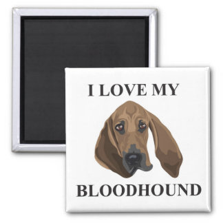 Bloodhound Love 2 Inch Square Magnet