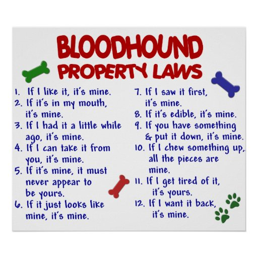 BLOODHOUND PL2 POSTER