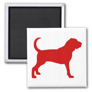 Bloodhound (red) 2 inch square magnet