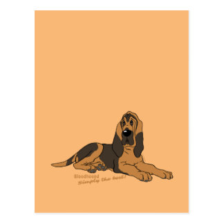 Bloodhound - Simply the best! Postcard