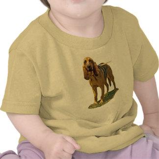 Bloodhound Tshirt