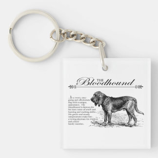 Bloodhound Vintage Storybook Style Square Acrylic Keychains
