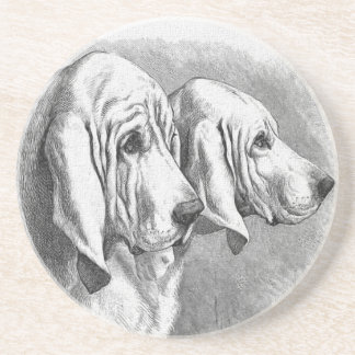 Bloodhounds Vintage Dog Illustration Drink Coaster
