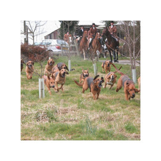 bloodhounds working canvas print