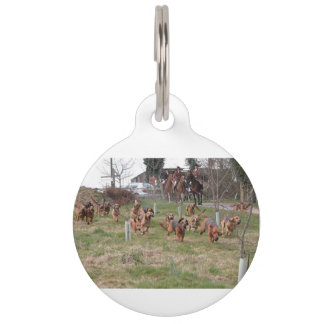 bloodhounds working pet ID tag