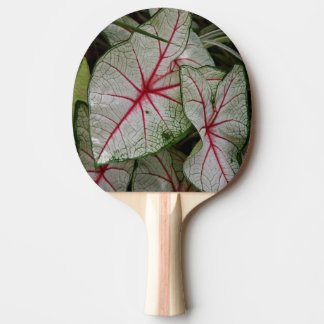 Bloodleaf Ping Pong Paddle