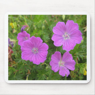 Bloody Cransebill flowers Mouse Pad
