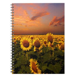 Bloody Skies Spiral Notebook