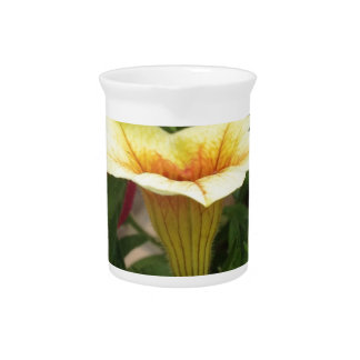 Bloom cups pitcher