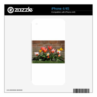 bloom decals for iPhone 4