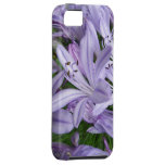 Bloom Flower iPhone 5 Cases