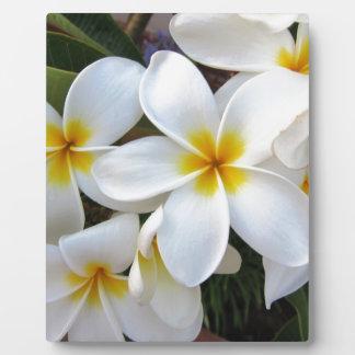 Bloom Flowers Photo Plaque