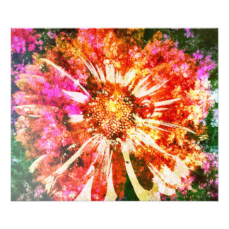 Bloom Photo Print