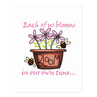 BLOOM POST CARDS