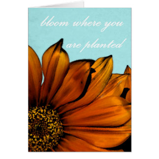 'bloom where you are planted' blank greeting card