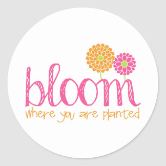Bloom Where You Are Planted Classic Round Sticker