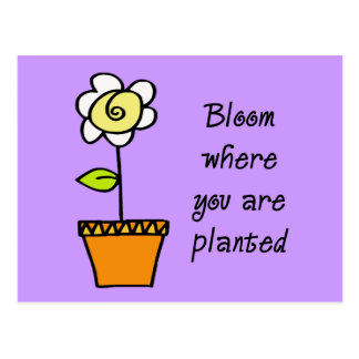 Bloom Where You Are Planted II Postcard