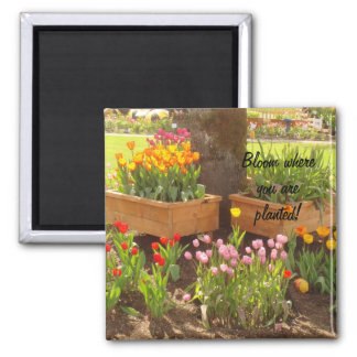 Bloom where you are planted! 2 inch square magnet