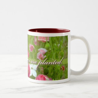 Bloom Where You Are Planted, Pink poppies Two-Tone Coffee Mug