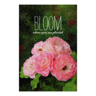 Bloom Where You Are Planted Pink Roses Inspiration Poster
