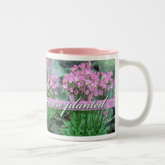Bloom Where You Are Planted, Shooting Star Two-Tone Coffee Mug
