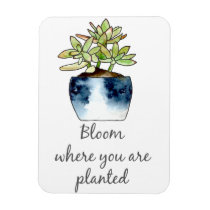 Bloom Where You Are Planted Succulent Magnet
