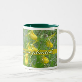 Bloom Where You Are Planted, Yellow Ladyslipper Two-Tone Coffee Mug