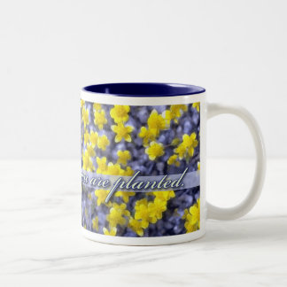 Bloom Where You Are Planted, Yellow Wildflowers Two-Tone Coffee Mug