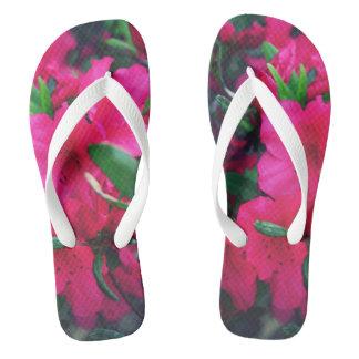 Azalea Canvas Shoes & Printed Shoes