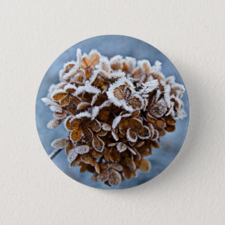 Bloom with ice crystals pinback button