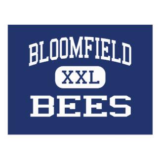 Bloomfield - Bees - High - Bloomfield Nebraska Postcard
