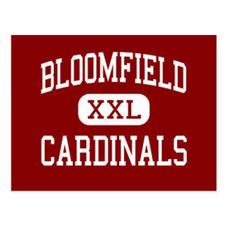Bloomfield - Cardinals - High - Bloomfield Ohio Postcard