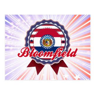 Bloomfield, MO Postcard