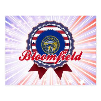 Bloomfield, NE Postcard