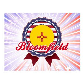 Bloomfield, NM Postcard