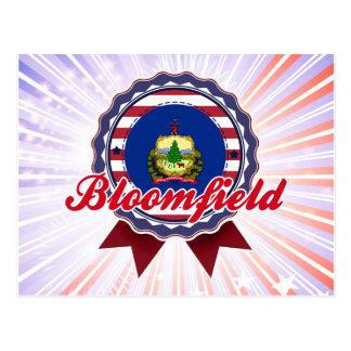 Bloomfield, VT Postcard