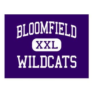 Bloomfield - Wildcats - High - Bloomfield Missouri Postcard