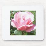 Bloomin Mousepad color de rosa rosado Alfombrilla De Ratones