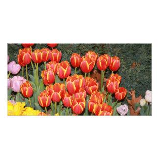 Bloomin' Tulips! Card