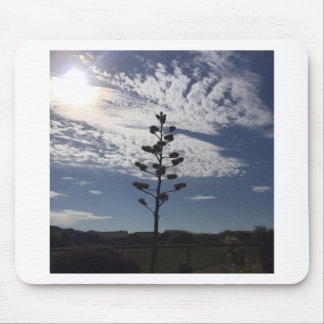 Blooming agave mouse pad