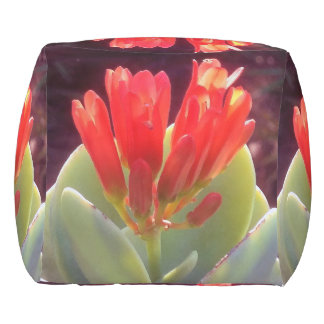 Blooming Agave Outdoor Pouf
