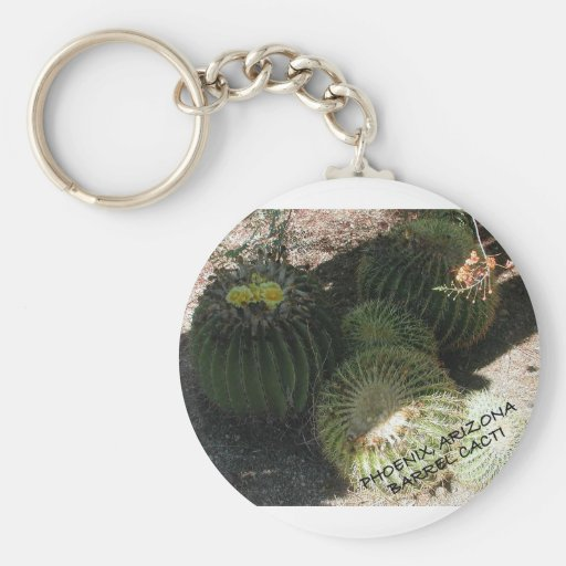 BLOOMING BARREL CACTI AND ASSORTED PHRASES KEYCHAINS