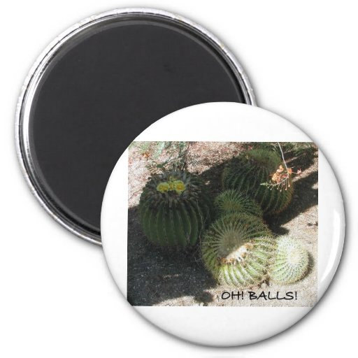BLOOMING BARREL CACTI AND ASSORTED PHRASES REFRIGERATOR MAGNET