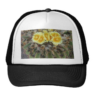 BLOOMING BARREL CACTI AND PHRASES TRUCKER HATS