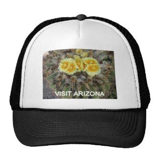 BLOOMING BARREL CACTI AND PHRASES HATS
