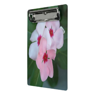 Blooming Beautiful Pink Impatiens Flowers Mini Clipboard