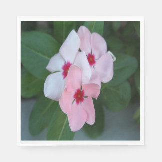 Blooming Beautiful Pink Impatiens Flowers Paper Napkin